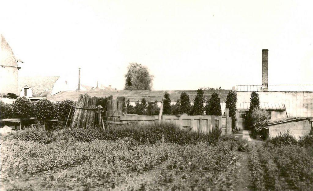 Eerste Ringdijkstraat 41 Kwekerij Vliet en Wielinga - ± 1935 . Foto: Familie Jan van Deudekom  Alle rechten voorbehouden