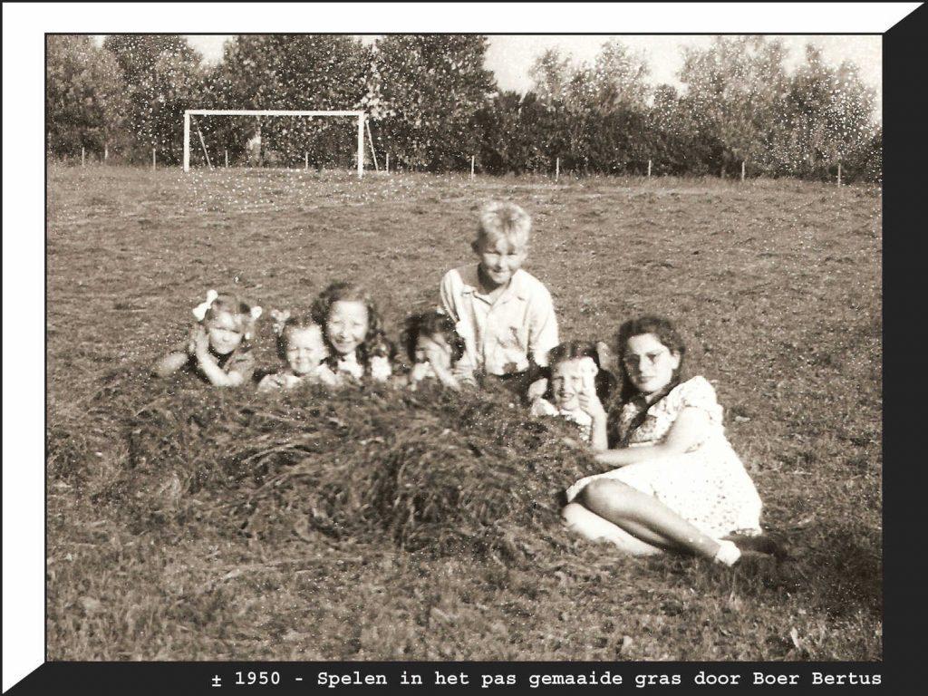 Bij D.J.K. op Sportpark Middenmeer. ± 1950. Spelen in het pas gemaaide gras (door boer Bertus) o.a. Nico Meijer, Hanneke Kaales, Corrie van Vegten, Thea, Carla en Hennie Wessels. Foto: Nico Meijer