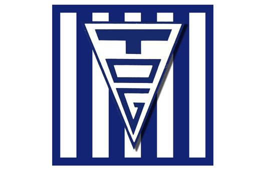 logo-tog-19-x-12