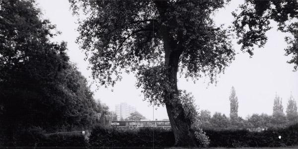 Sportpark Voorland