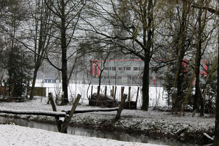 a.s.v. Fortius in de sneeuw - 11 december 2017 - Foto: Jo Haen - Alle rechten voorbehouden