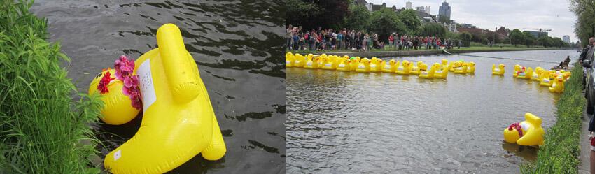 Het deelnemersveld bleef lang bij elkaar. Op één na ! . Foto: Jo Haen © Alle rechten voorbehouden