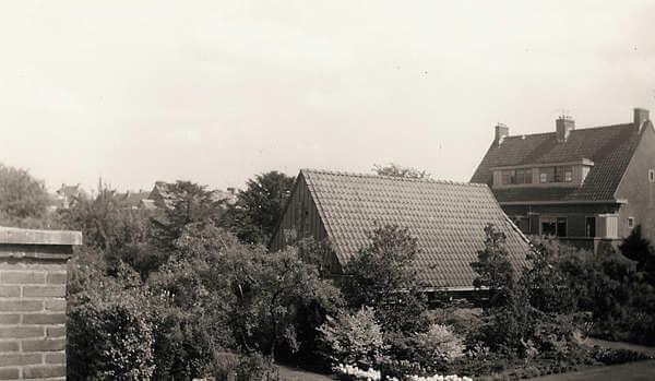 """De gemeenschappelijke binnentuin tussen de Veeteeltstraat en de Tuinbouwstraat in Betondorp in de jaren vijftig, genomen vanaf de veranda in de Veeteeltstraat 51. """"Ik geloof dat die er nu niet meer is. Het was een idylisch plekje, in de zomer altijd rustig, met de vogels - vooral de merels, het geluid van de zomer - zingend in de ochtend- en avondschemer."""" Foto fam. Muller. Alle rechten voorbehouden"""