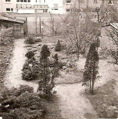 Tuin Fraunhoferstr 37 in 1964 . Foto: Frank van Leeuwen Alle rechten voorbehouden