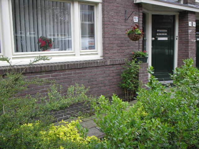 De voortuin van de woning van Betty in de Brinkstraat Alle rechten voorbehouden