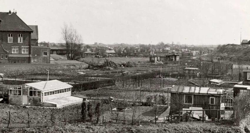 Volkstuinenpark Linnaeus Ooster Ringdijk - ± 1950 . Links is nog een gedeelte te zien van de voormalige Watergraafsmeerse Gasfabriek die in 1930 is opgeheven al bleef de woning nog een aantal jaren staan.. Foto: Beeldbank Amsterdam Alle rechten voorbehouden